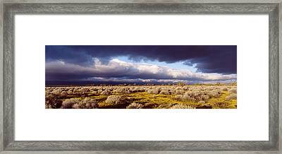 Clouds, Mojave Desert, California, Usa Framed Print by Panoramic Images