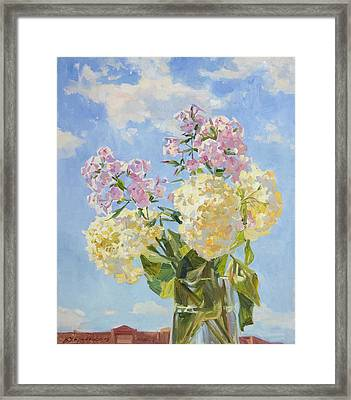 Clouds Of Hydrangea Framed Print by Victoria Kharchenko