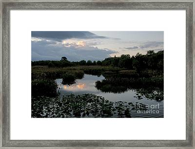 Clouds Over Green Cay Wetlands Framed Print by Mark Newman