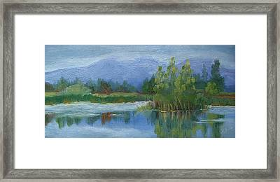 Cloudy Day At Walden Ponds Framed Print