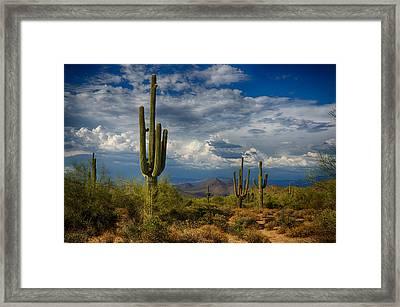 Cloudy Desert Skies  Framed Print by Saija  Lehtonen