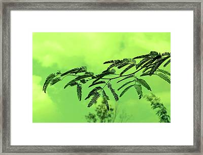 Cloudy Green Nature Framed Print by Deepti Chahar