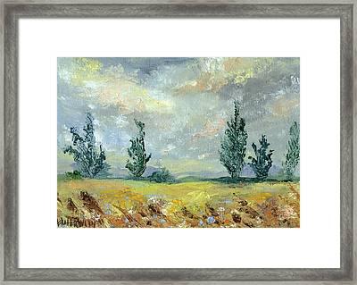 Cloudy Landscape Before The Rain Framed Print