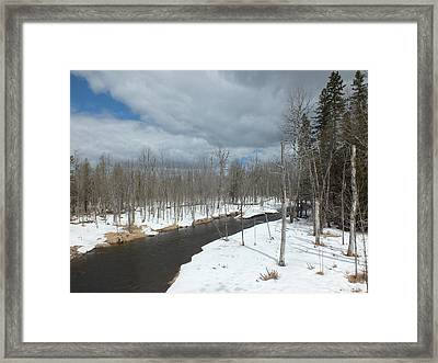 Framed Print featuring the photograph Cloudy Spring Day by Gene Cyr