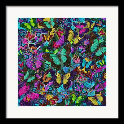 Coloured Butterfly Explosion Framed Prints