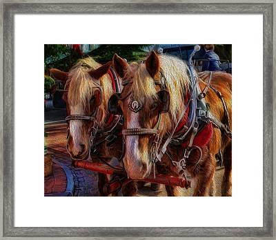 Clydesdale-drawn Carriage  Framed Print by Lee Dos Santos
