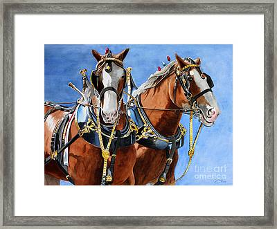 Clydesdale Duo Framed Print by Debbie Hart