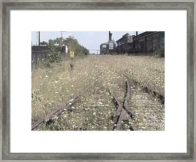 Cn Railroad 1 Framed Print by The Art of Marsha Charlebois