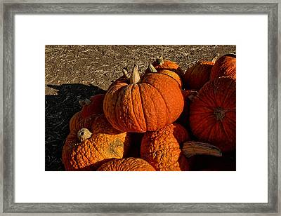 Framed Print featuring the photograph Knarly Pumpkin by Michael Gordon