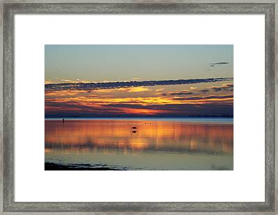 Co Existing Framed Print by Michele Kaiser
