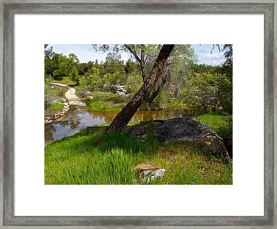 Coarsegold Creek In Park Sierra-ca Framed Print by Ruth Hager