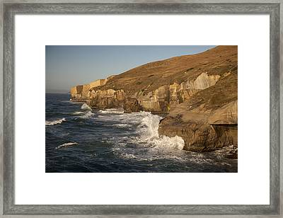 Coast And Tunnel Beach Otago New Zealand Framed Print by Colin Monteath