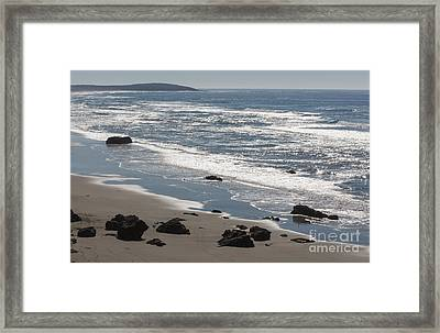 Coast Near Bodega Bay - 355 Framed Print by Stephen Parker