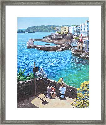 Coast Of Plymouth City Uk Framed Print by Martin Davey