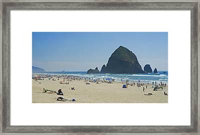 Coastal Attraction Framed Print by Nick  Boren