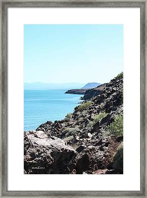 Coastal Baja Framed Print by Dick Botkin