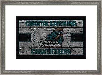 Coastal Carolinia Chanticleers Framed Print by Joe Hamilton