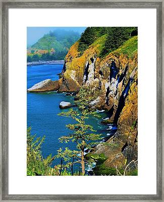 Coastal Color Framed Print