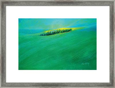 Coastal Copse Framed Print by Neil McBride