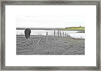 Miss Those Coastal Fields Back Home  Framed Print