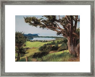 Coastal Fiji Framed Print