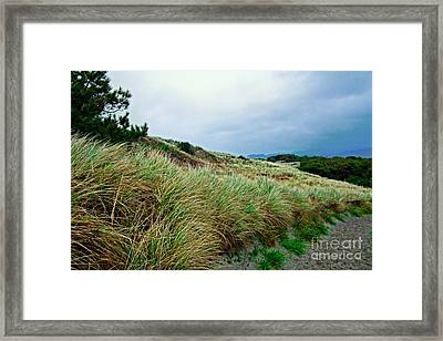 Coastal Flora, Oregon Framed Print by Tim Holt