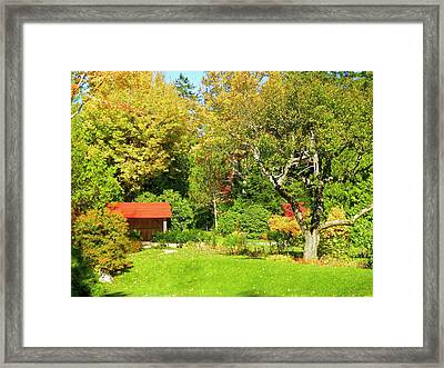 Framed Print featuring the photograph Coastal Garden by Gene Cyr