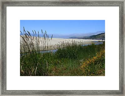 Coastal Grasslands Framed Print