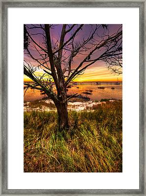 Coastal Harbor Framed Print by Debra and Dave Vanderlaan