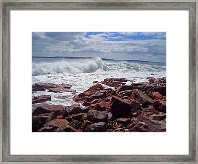 Coastal Maine Framed Print