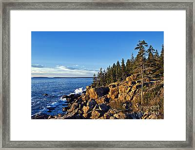 Coastal Maine Landscape. Framed Print by John Greim