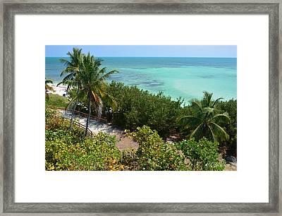 Coastal Overlook Framed Print by Dale Wilson