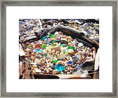 Coastal Seaglass Art Prins Shells Driftwood Framed Print by Baslee Troutman
