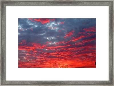 Coastal Sensation Framed Print by David  Norman