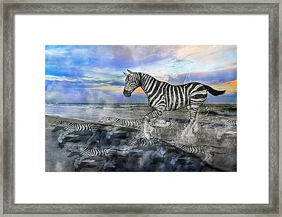 Coastal Stripes I Framed Print by Betsy Knapp