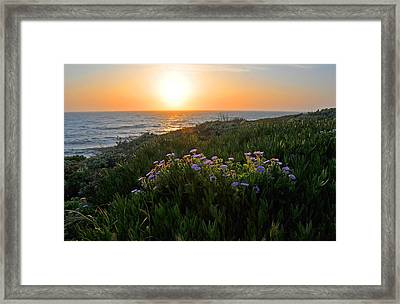 Coastal Sunset Framed Print by Lynn Bauer