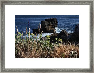 Coastal View From Cascais  Framed Print by Darleen Stry