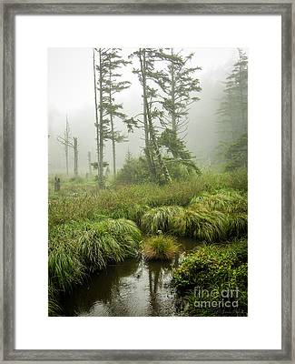 Framed Print featuring the photograph Coastal Wetlands by Susan Parish