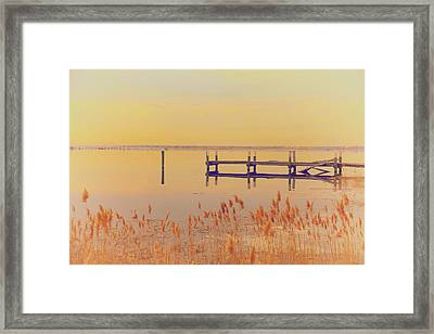 Coastal Winter Framed Print by Karol Livote