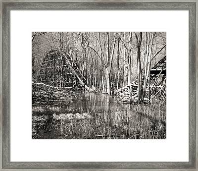 Coaster Reflections Framed Print