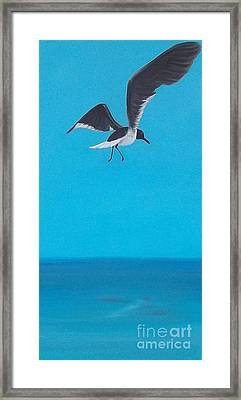 Coasting Framed Print by Georgia Griffin