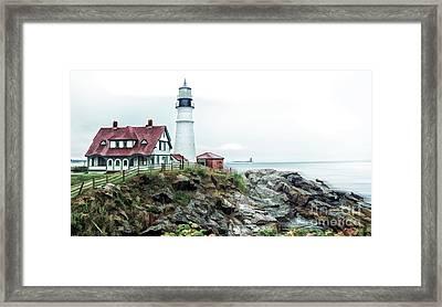 Coastline Sentinel Framed Print