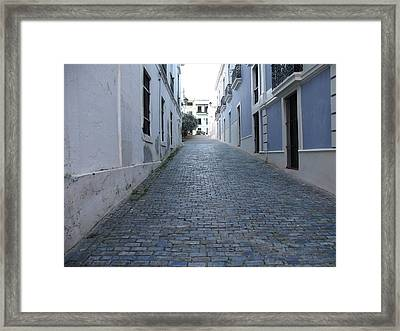 Framed Print featuring the photograph Cobble Street by David S Reynolds