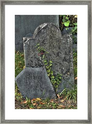 Cobbs Hill Burial Ground 2 Framed Print by Deborah Smolinske
