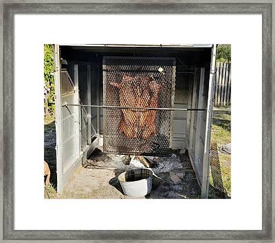 Cochon De Lait -roasting Framed Print by Bradford Martin