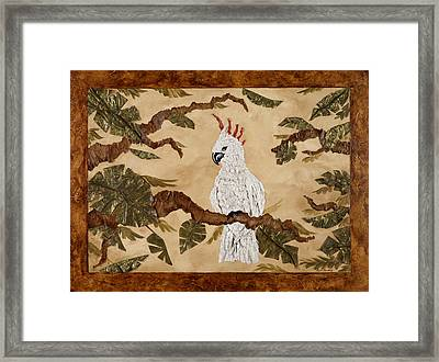Cockatoo Out On A Limb Framed Print by Nickie Bradley