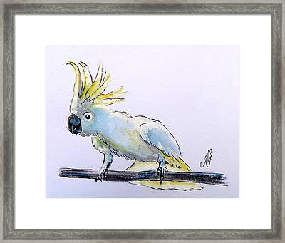 Cockatoo View Framed Print