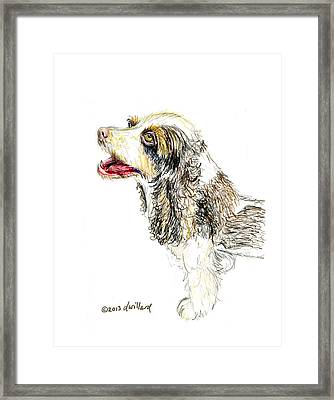 Cocker Spaniel Framed Print by Deborah Willard
