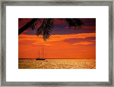 Cocktail Tropical Dream Framed Print by Jenny Rainbow