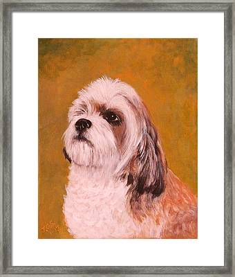 Coco-puffs Framed Print by Janet Greer Sammons